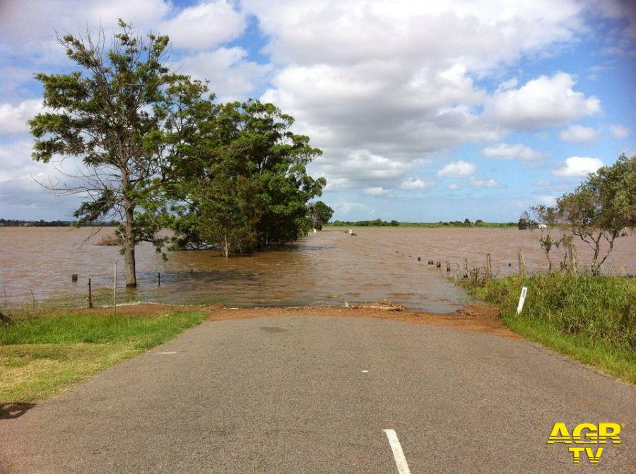 Arrone, Protezione Civile in allarme per il livello del fiume