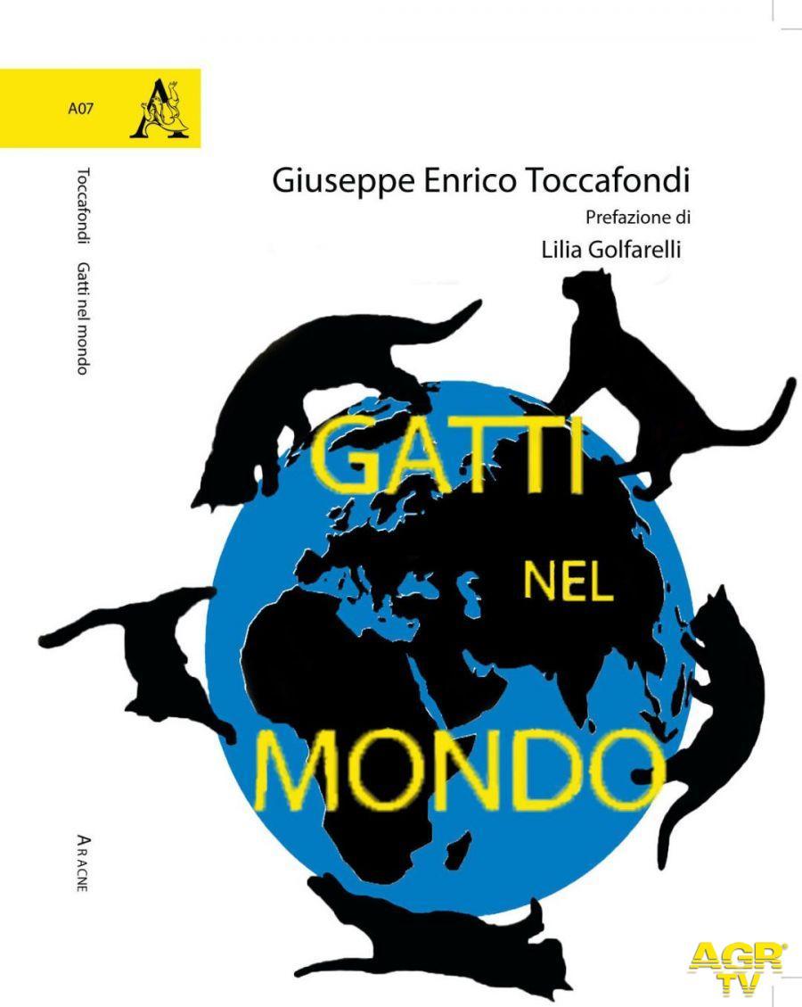 Gatti nel mondo di Giuseppe Enrico Toccafondi