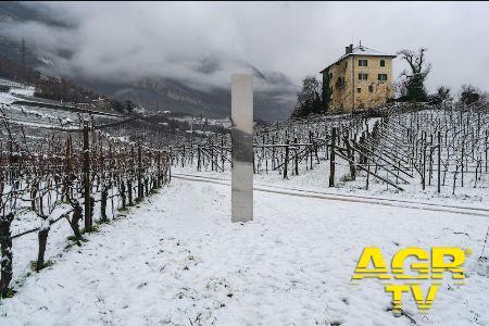 Un Monolite.... appare tra le vigne altoatesine di Baron Longo
