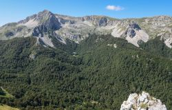 valle leonina
