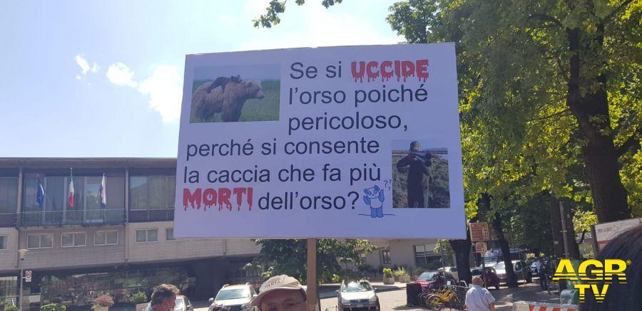 Oipa protesta e difesa Orsi