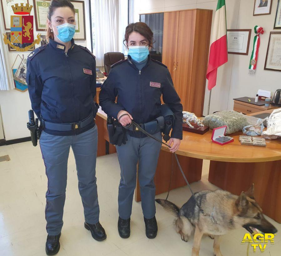 I cani individuano centrale di spaccio in un appartamento, arrestato 47enne e sequestrata 1kg e mezzo di droga