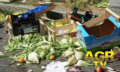 Ostia, mercato via Desiderato Pietri, allarme degrado