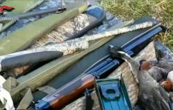 Operazione Delta del Po controlli antibracconaggio carabinieri forestali, sequestrati 21 fucili