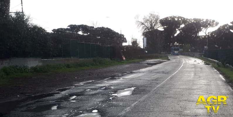 Incidente stradale sulla via Ostiense, serve manutenzione dell'asfalto e la potatura della vegetazione
