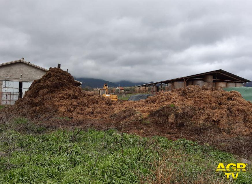Scarperia e San Piero, Carabinieri Forestali denunciano titolare di un allevamento