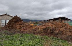 Scarperia , Carabinieri Forestali denunciano titolare di un allevamento