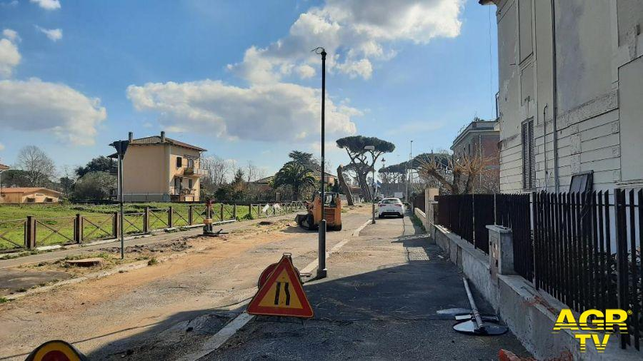 Ostia Antica, S.I. X Municipio, l'abbattimento dei pini è uno sfregio, faremo un accesso agli atti per verificare