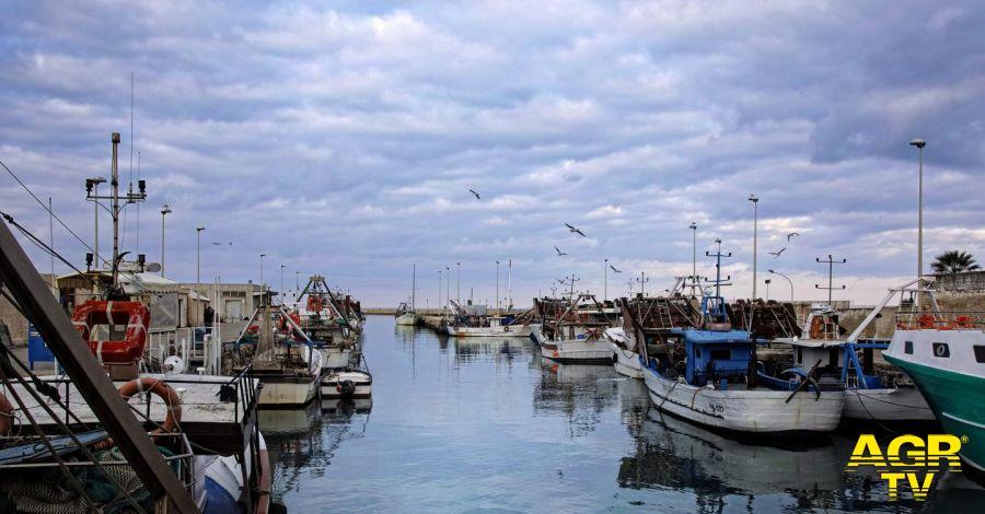 Toscana-Aumento giorni fermo pesca
