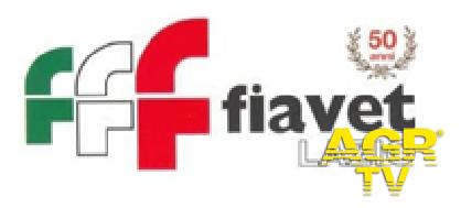 Fiavet Lazio