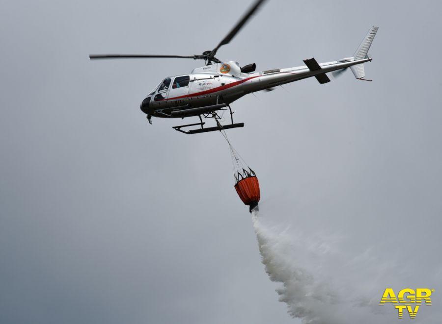 Incendio boschivo in valle della Torbola