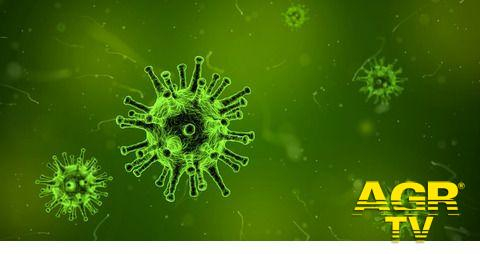 Vaccini anti Covid e mercati paralleli