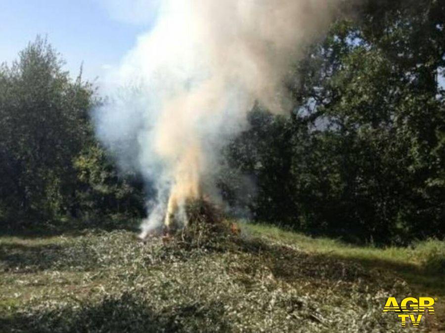 Incendi, da sabato 20 fino al 31 marzo divieto assoluto di abbruciamenti