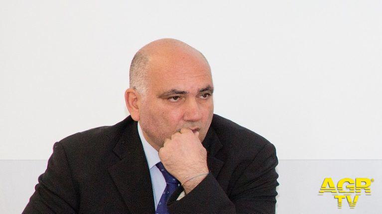 Arcangelo Francesco Violo, Presidente del Consiglio Nazionale dei Geologi