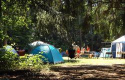 Il Camping Internazionale di Castelfusano è un patrimonio da salvare, chiesta la proroga dei servizi