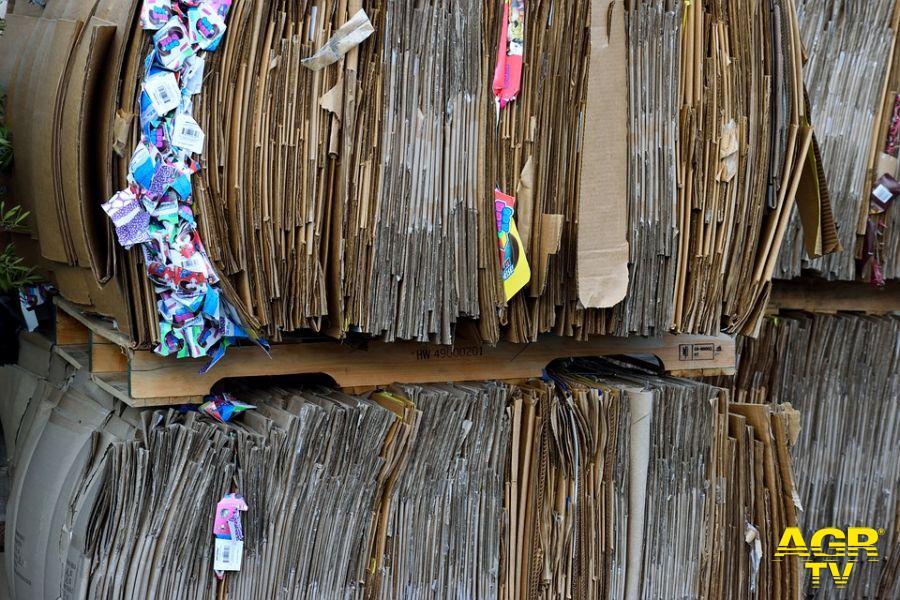 Paper week la settimana del riciclo della carta e del cartone, scuole di Roma impegnate