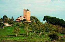 Via libera al Piano d'Assetto della Riserva della Marcigliana, obiettivo valorizzare il patrimonio ambientale, storico e culturale