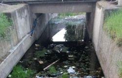 canale palidoro