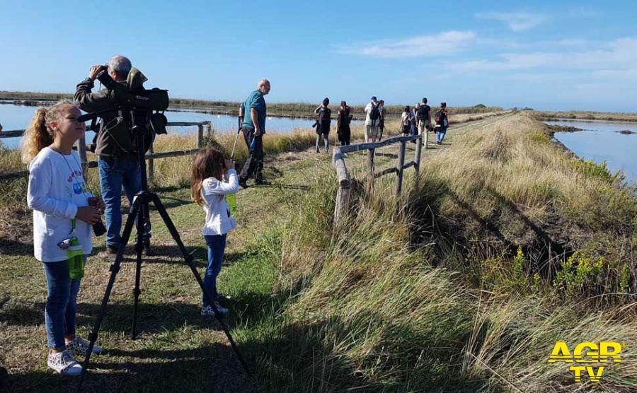 Saline di Tarquinia, la Regione conferma la scogliera anti-erosione, la Federbalneari pronta ad adire le vie legali
