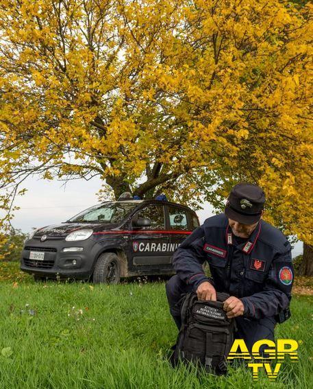 Carabinieri-Comando provinciale di Firenze Bracconieri colti sul fatto dai Carabinieri forestali a Calenzano