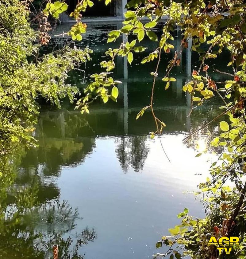 Ok Regione Lazio, Roma natura acquista un altro gioiello: il monumento naturale lago ex Snia