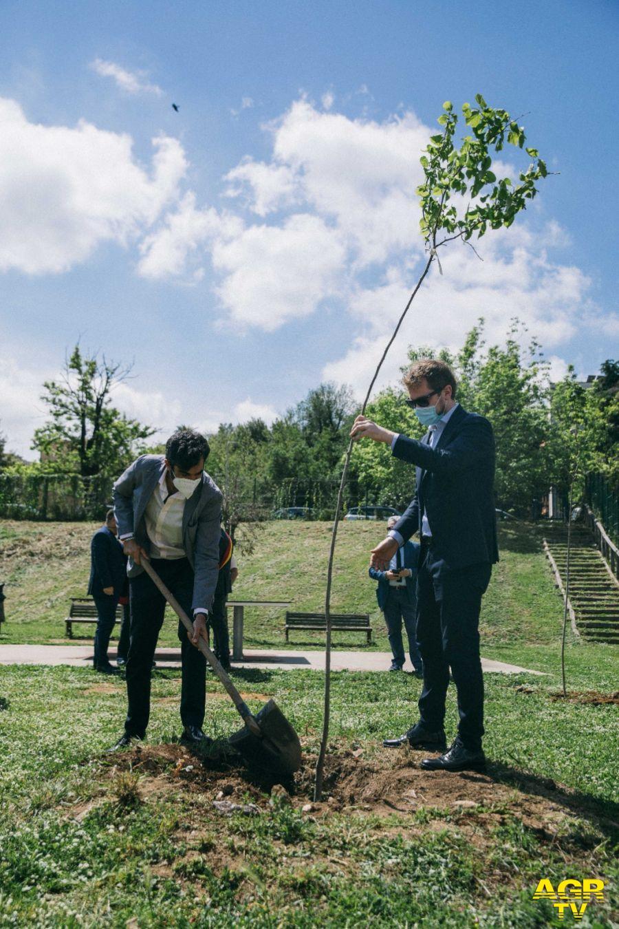 Duemila nuovi alberi piantati a Roma, nascono i boschetti anti-smog