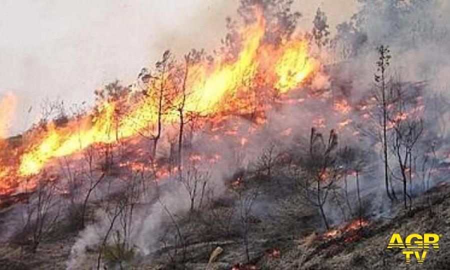 Incendio Argentario, fiamme in fase di contenimento