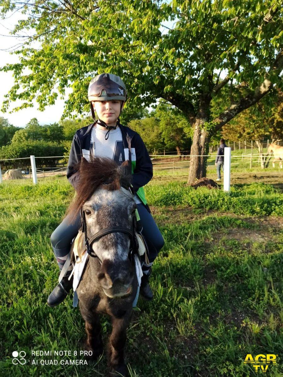 Bassano in Teverina, il cavallo che passione...nasce la scuola d'equitazione La Marasca