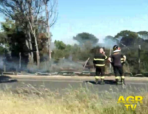 incendio in pineta spegnimento pompieri