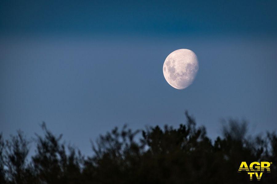 """Astronomia online, il 10 giugno va in onda in diretta """"Sun Day"""""""