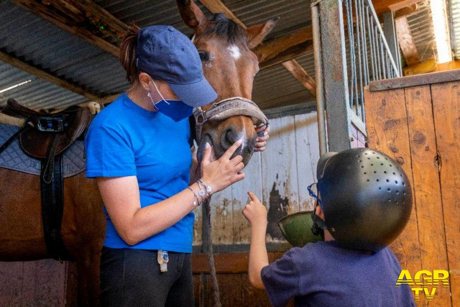 Interventi assistiti con animali per riabilitazione