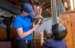 Interventi terapeutici e riabilitazione con gli animali per tutti