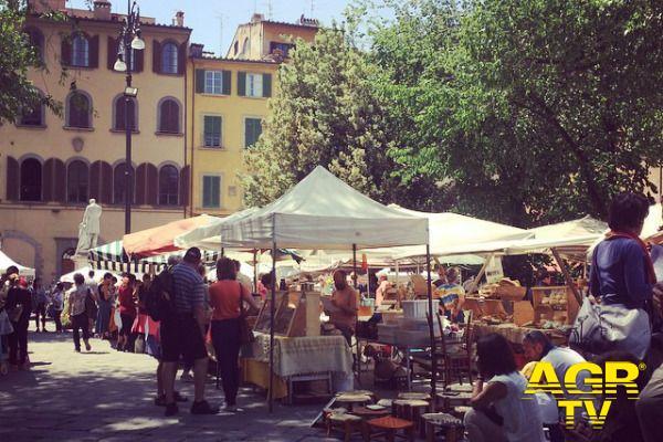 Feste e sagre a Prato