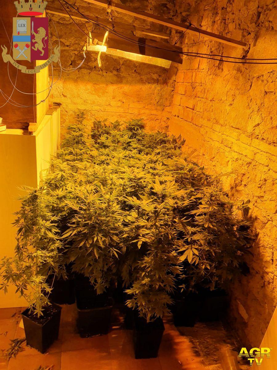 Roma.  La Polizia di Stato sequestra, nel marzo scorso, una serra di marijuana in via della Nocetta