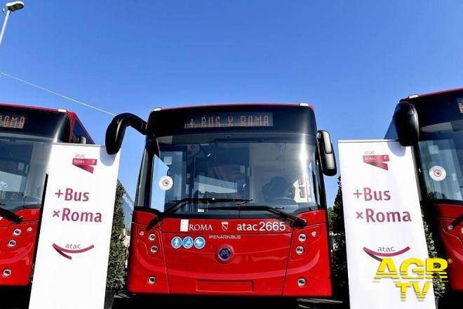 presentazione nuovo bus