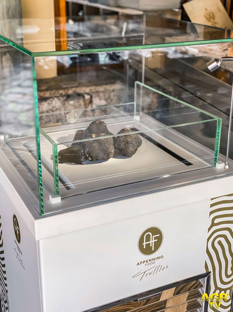 Tartufo tutto l'anno:il microhabitat del bosco riprodotto all'interno di una vetrina refrigerata