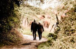 Oggi, 25 luglio, Prima Giornata Mondiale nonni e anziani