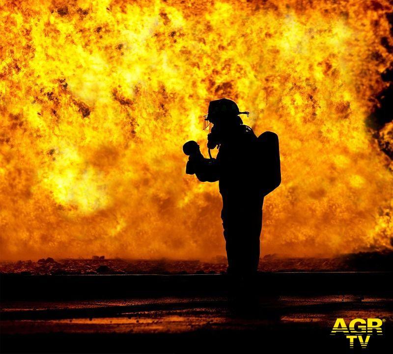 Incendi, la prevenzione e la gestione attiva del verde fondamentali per la protezione del patrimonio boschivo