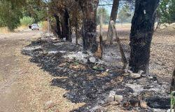 Infernetto, via Salorno, discarica in fiamme, FdI: subito la bonifica dell'arteria