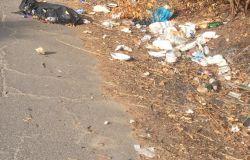 aranova via ferdinando neri rifiuti bordo strada