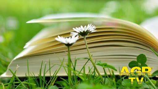 Ostia, dal 27 al 28 agosto, l'Italia s'è desta e dopo i successi dello sport è il momento della cultura con una nuova Festa della lettura
