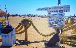 Baubau beach Maccarese