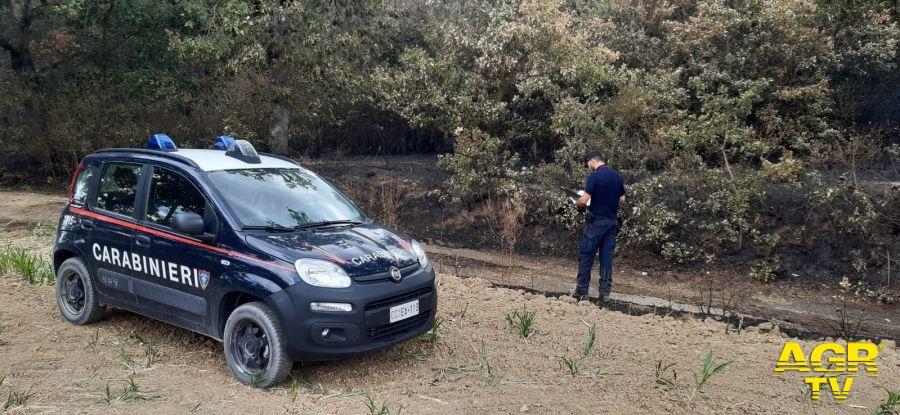 Carabinieri forestali, a Terni preso il piromane del Monte Argento, un senza fissa dimora