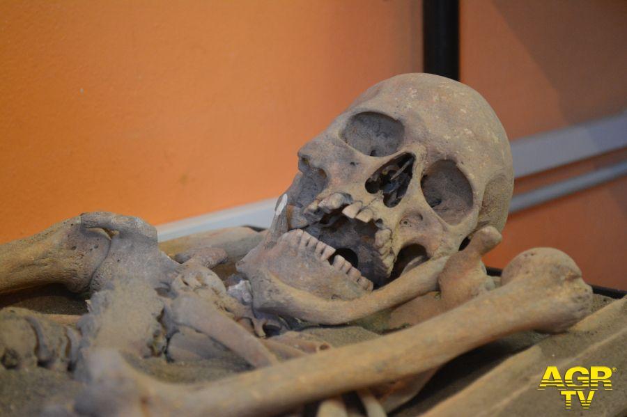 Pomezia, al Museo Lavinium un seminario di ricerca sull'archeologia funeraria