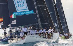 Selene Halifax in regata