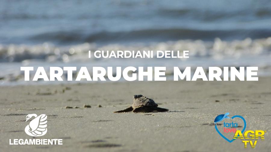 I guardiani delle Tartarughe marine