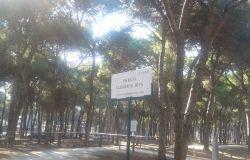il parco intitolato alla memoria di Clemente Riva