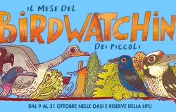 Ostia, all'Oasi Lipu parte il mese del Birdwatching dei piccoli