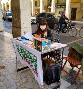 Referendum cannabis, raggiunta quota 620 mila ed ora raccolta firme in oltre cento piazza italiane