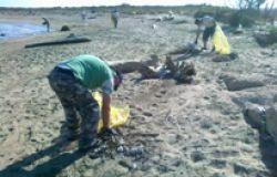 Focene, i rifiuti raccolti sulle spiagge tornano al loro posto...per effetto del maltempo